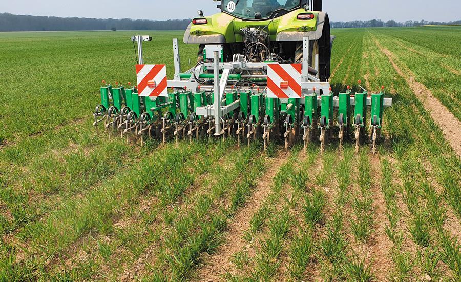 Bineuse céréales 18 rangs 21 cm - Agronomic